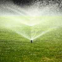 High summer temperatures bring increased legionella risks